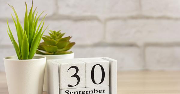 calendar image of September 30 next to plant
